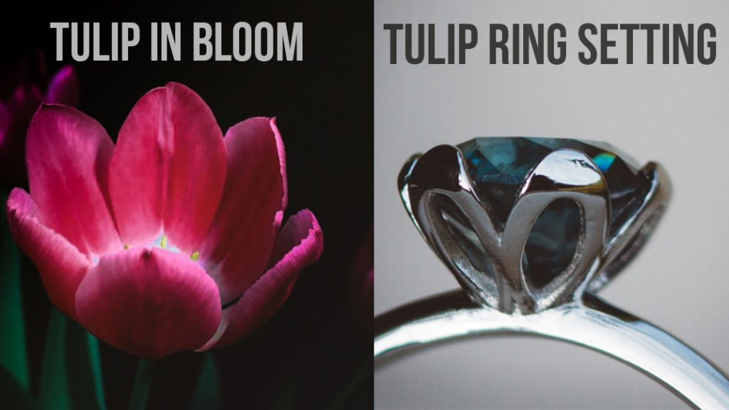 comparing a tulip in bloom to a tulip ring setting